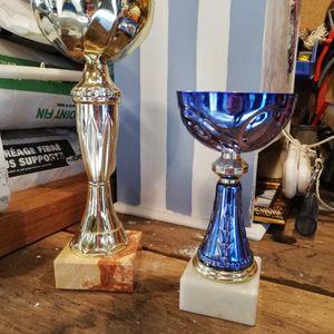 lot de 2 coupes/trophées