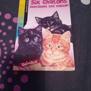 Livre enfants chats