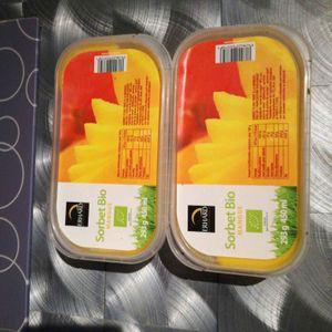 Lot de 2 Sorbets bio à la mangue