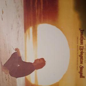 Vinyl Neil diamond