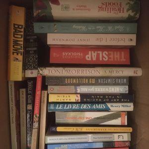Lot de livres de fiction en anglais