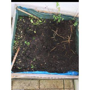 Terre pour jardinière