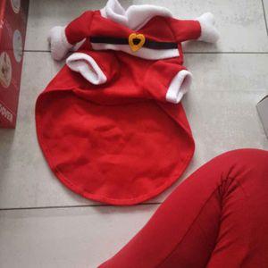 Vêtement chat Noël
