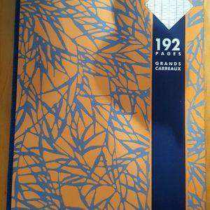 Cahier 21 x 29,7 192 pages grds carreaux