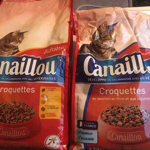 Croquettes pour chats