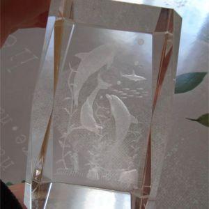 Deco bloc en verre avec dauphin