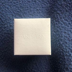 Boîtier Pandora