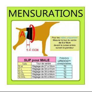 Protection lavable chien
