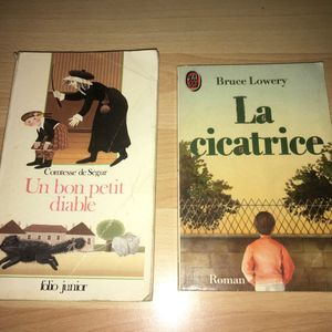 Lot de 2 romans jeunesse