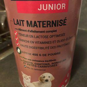 Lait maternisé chaton/chiots
