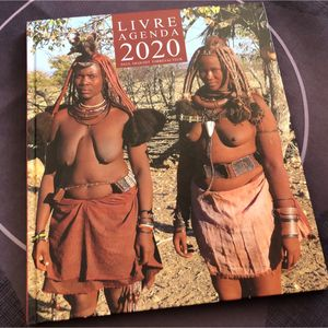 Livre agenda 2020