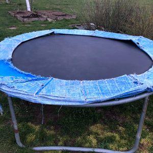 donne trampoline 250 cm