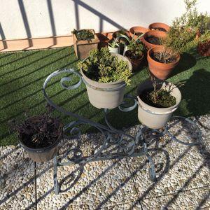 Porte plantes en fer forgé