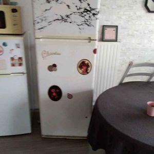 Réfrigérateur zanussi