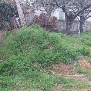 Donne terre végétale