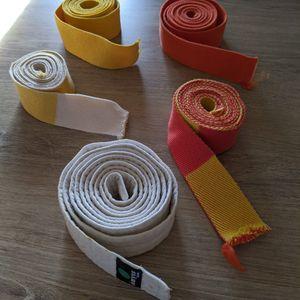 5 Ceintures judo