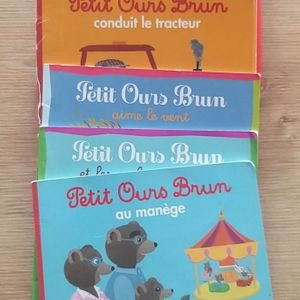 Livres petits ours brun