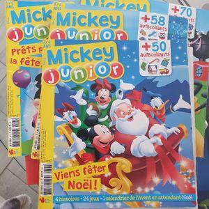 Mickey junior presse de 2018-2019