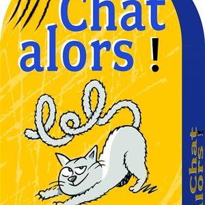 """Jeu """"Chat alors"""""""