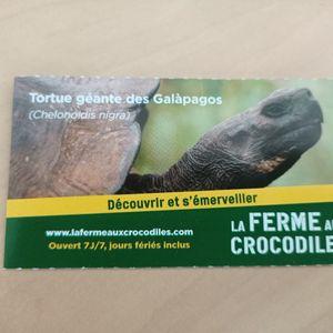 Entrée Ferme aux crocodiles