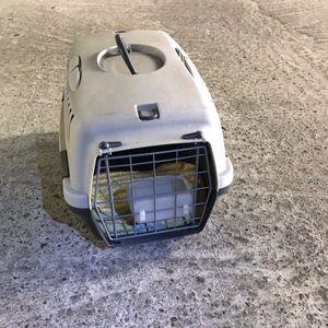 Caisse de transport pour petits animaux
