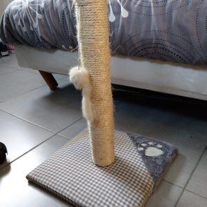 Arbre à chat (grifoire)